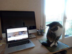 Ganesh joue au chat et à la souris